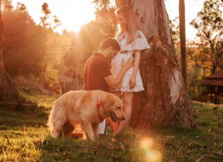 zapoznanie noworodka z psem lub kotem