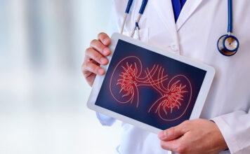 Kreatynina - lekarz trzymający tablet przedstawiający schemat budowy nerek
