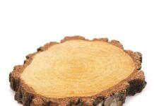 Drewniane plastry